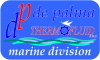 De Palma Thermofluid snc